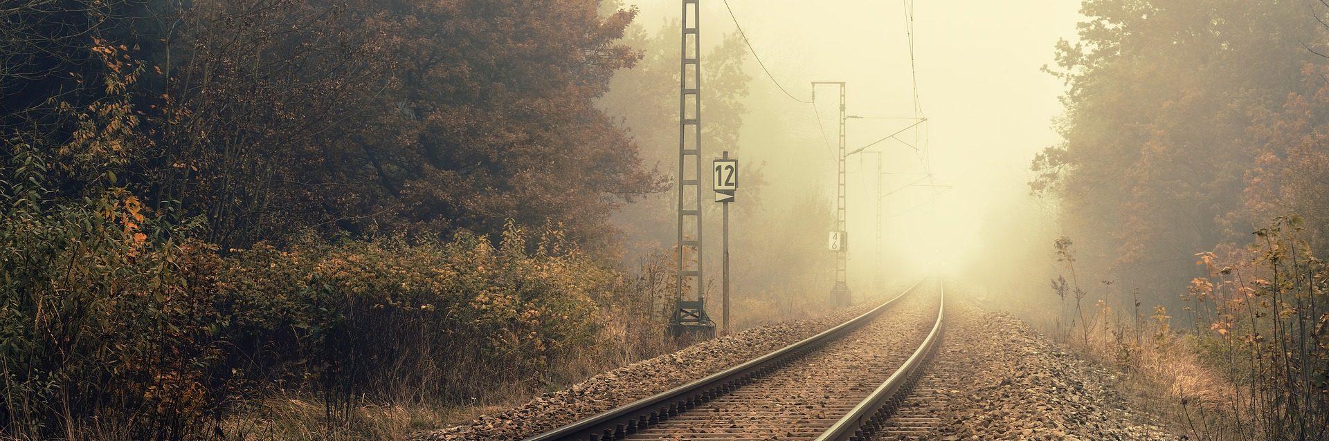 Entre la niebla es un relato escrito por Miguel Rodríguez Echeandía sobre los viajes en tren y lo que se piensa en ellos.