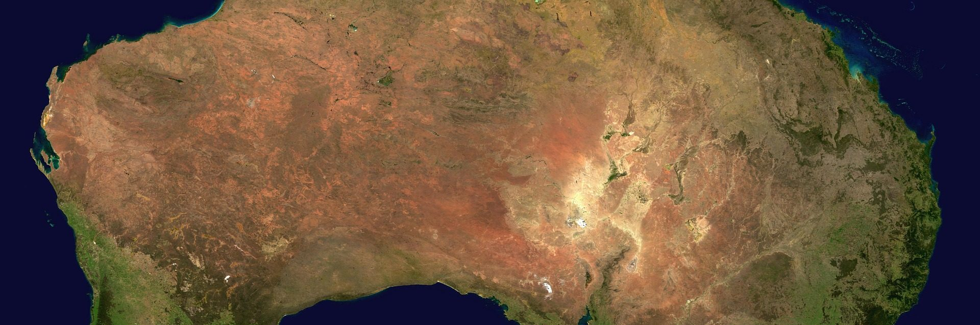 Invasión es un relato escrito por Miguel Rodríguez Echeandía sobre la guerra contra los emús que se llevó a cabo en Australia en el siglo XX.
